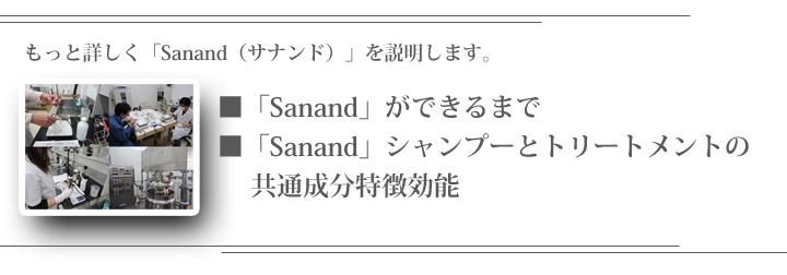サナンドをもっと詳しく説明する